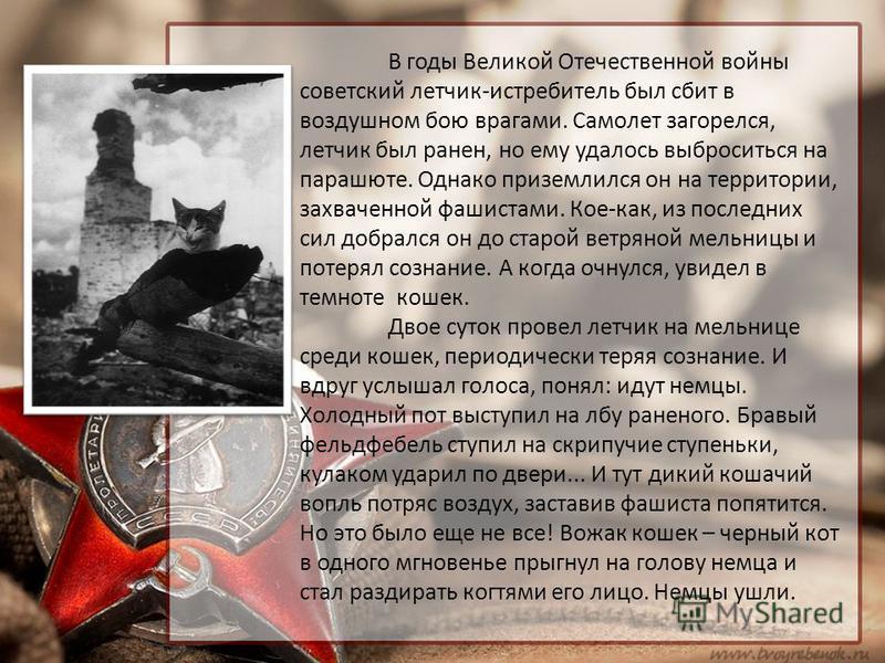 В годы Великой Отечественной войны советский летчик-истребитель был сбит в воздушном бою врагами. Самолет загорелся, летчик был ранен, но ему удалось выброситься на парашюте. Однако приземлился он на территории, захваченной фашистами. Кое-как, из пос