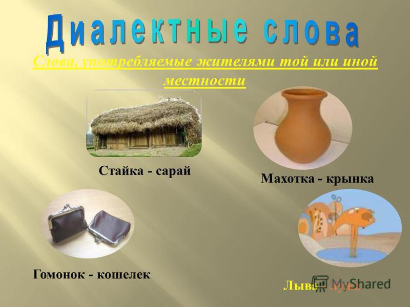 Слова, употребляемые жителями той или иной местности Стайка - сарай Махотка - крынка Гомонок - кошелек Лыва - лужа
