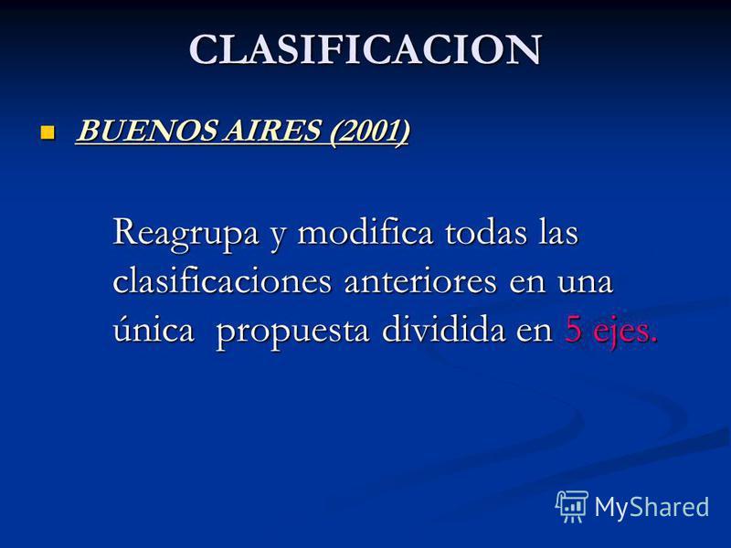 CLASIFICACION BUENOS AIRES (2001) BUENOS AIRES (2001) Reagrupa y modifica todas las clasificaciones anteriores en una única propuesta dividida en 5 ejes.