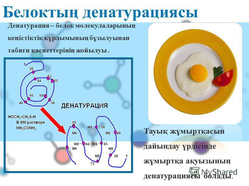 Белоктың денатурациясы Тауық жұмыртқасын дайындау үрдісінде жұмыртқа ақуызының денатурациясы болады. Денатурация – белок молекулаларының кеңістіктік құрлымының бұзылуынан табиғи қасиеттерінің жойылуы.