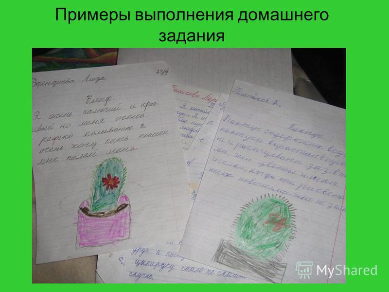 Примеры выполнения домашнего задания