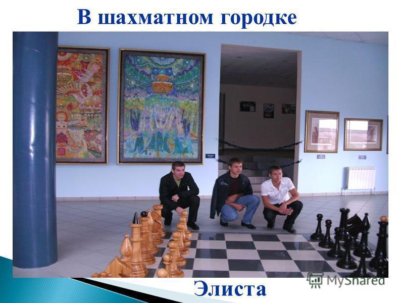 Элиста В шахматном городке