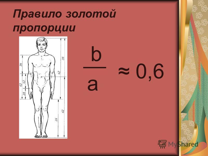 Правило золотой пропорции b 0,6 a