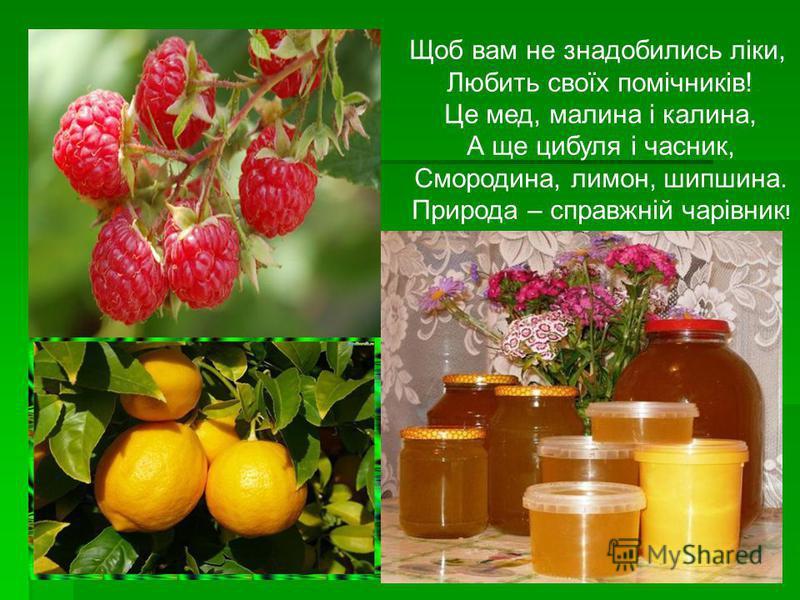 Щоб вам не знадобились ліки, Любить своїх помічників! Це мед, малина і калина, А ще цибуля і часник, Смородина, лимон, шипшина. Природа – справжній чарівник !