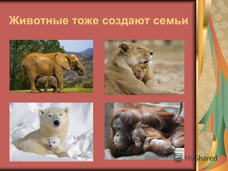 Животные тоже создают семьи