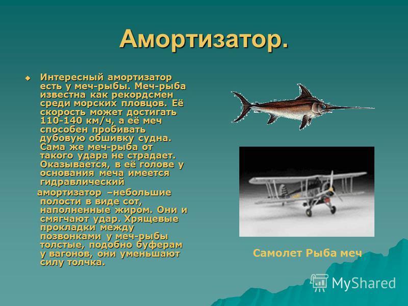 Рыба – меч. В природе имеют место разнообразные приспособления, которые позволяют живым организмам безболезненно переносить перегрузки, возникающие при ускорении и торможении. Известно, что толчок при прыжке смягчается, если приземляться на полусогну