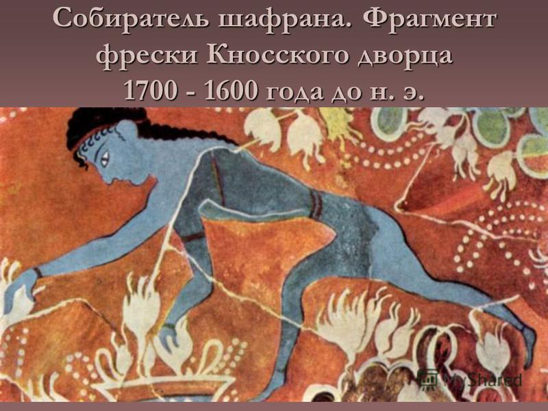 Собиратель шафрана. Фрагмент фрески Кносского дворца 1700 - 1600 года до н. э.