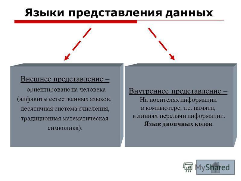 Языки представления данных - устройство ЭВМ, которое используется для записи, хранения и выдачи по запросу информации, необходимой для решения задач на ЭВМ. Внутреннее представление – На носителях информации в компьютере, т.е. памяти, в линиях переда
