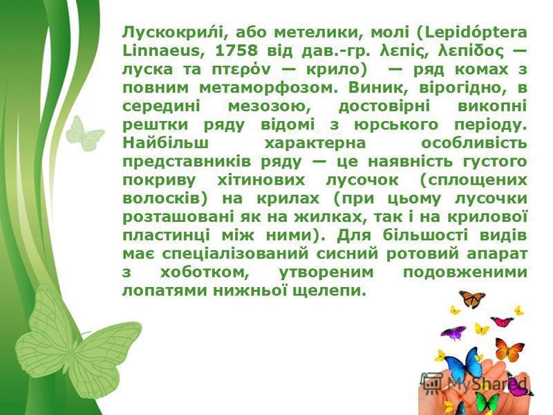 Free Powerpoint TemplatesPage 2 Лускокри́лі, або метелики, молі (Lepidóptera Linnaeus, 1758 від дав.-гр. λεπίς, λεπίδος луска та πτερόν крило) ряд комах з повним метаморфозом. Виник, вірогідно, в середині мезозою, достовірні викопні рештки ряду відом