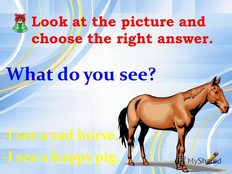 Look at the picture and choose the right answer. What do you see? -I see a sad horse. -I see a happy pig.