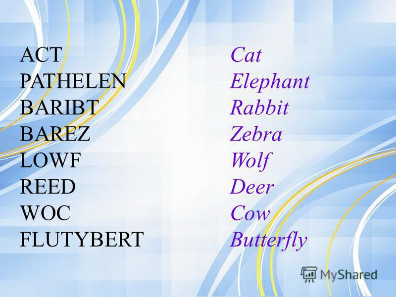 ACT PATHELEN BARIBT BAREZ LOWF REED WOC FLUTYBERT Cat Elephant Rabbit Zebra Wolf Deer Cow Butterfly