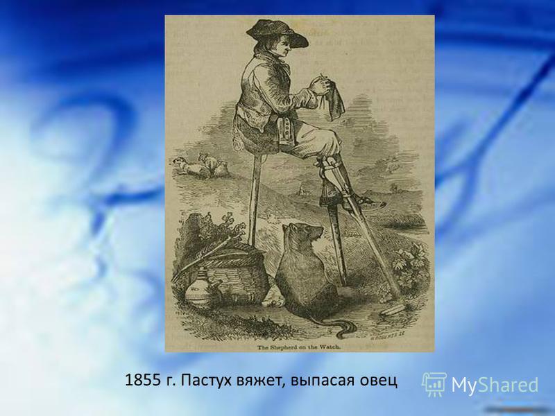 1855 г. Пастух вяжет, выпасая овец