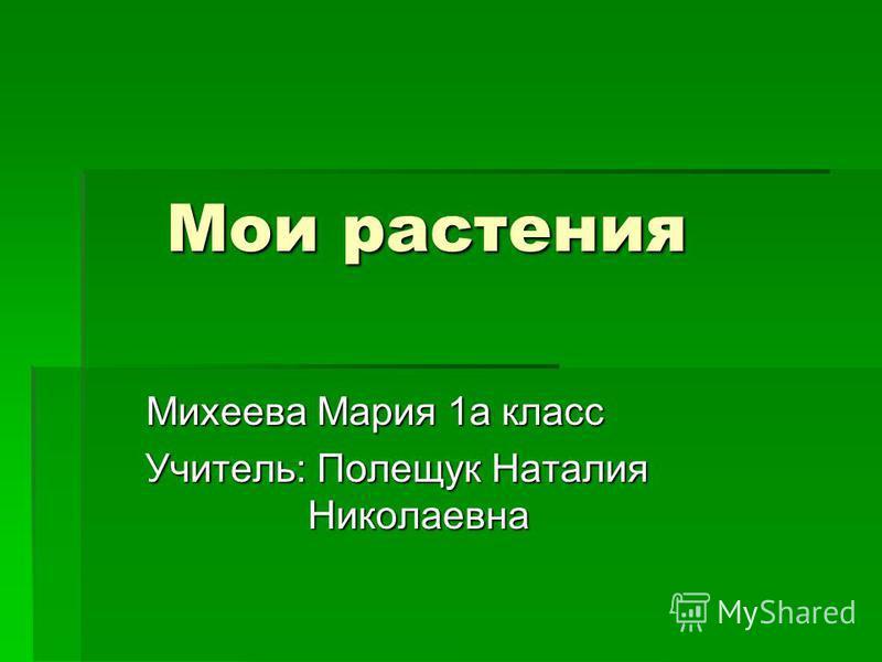 Мои растения Михеева Мария 1 а класс Учитель: Полещук Наталия Николаевна Учитель: Полещук Наталия Николаевна