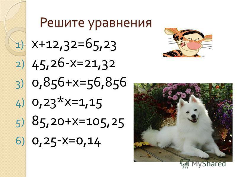 Уравнения по математике Выполнила ученица 5 б класса Козюрина Юлия