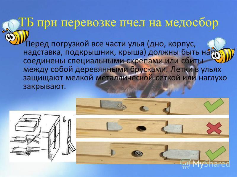 ТБ при перевозке пчел на медосбор Перед погрузкой все части улья (дно, корпус, надставка, подкрышник, крыша) должны быть наглухо соединены специальными скрепами или сбиты между собой деревянными брусками. Летки в ульях защищают мелкой металлической с
