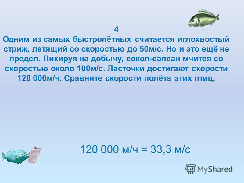 4 Одним из самых быстролётных считается иглохвостый стриж, летящий со скоростью до 50 м/с. Но и это ещё не предел. Пикируя на добычу, сокол-сапсан мчится со скоростью около 100 м/с. Ласточки достигают скорости 120 000 м/ч. Сравните скорости полёта эт
