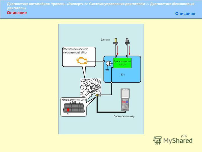 Диагностика автомобиля. Уровень «Эксперт» >> Система управления двигателем >> Диагностика ( бензиновый двигатель ) Описание Световой сигнализатор неисправностей (MIL) Датчики Диагностический контур ECU Колодка диагностики DLC3 SIL Переносной сканер (