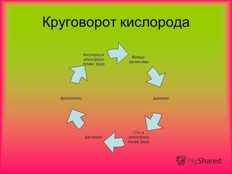 Круговорот кислорода Живые организмы дыхание СО2 в атмосфере, почве, воде растения фотосинтез Кислород в атмосфере, почве, воде