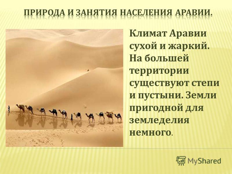 Климат Аравии сухой и жаркий. На большей территории существуют степи и пустыни. Земли пригодной для земледелия немного.