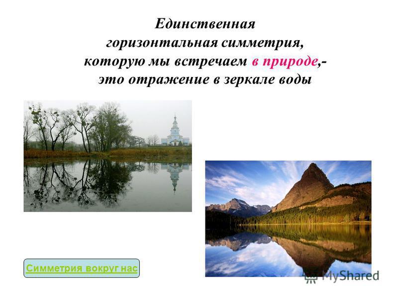 Единственная горизонтальная симметрия, которую мы встречаем в природе,- это отражение в зеркале воды Симметрия вокруг нас