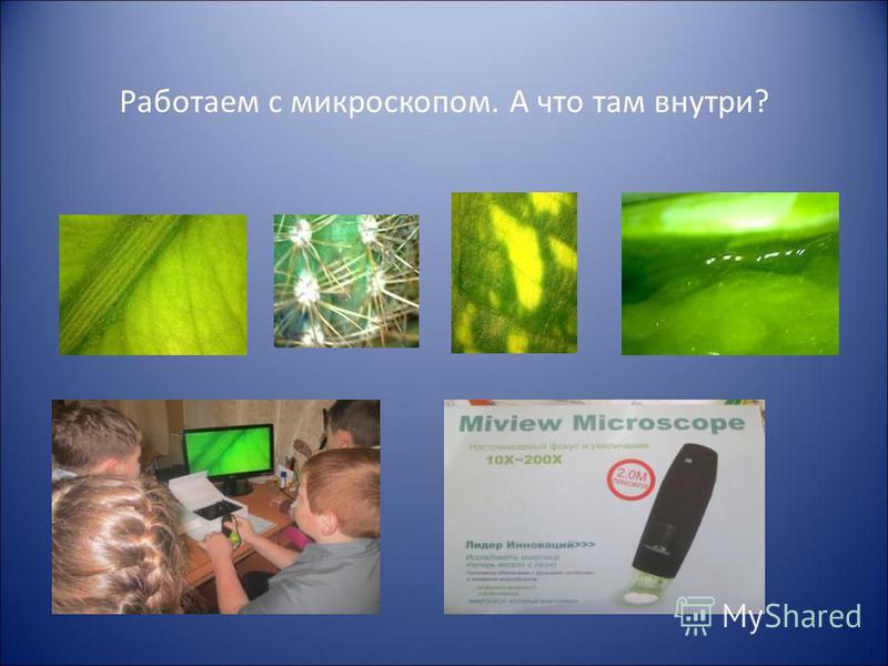 Работаем с микроскопом. А что там внутри?