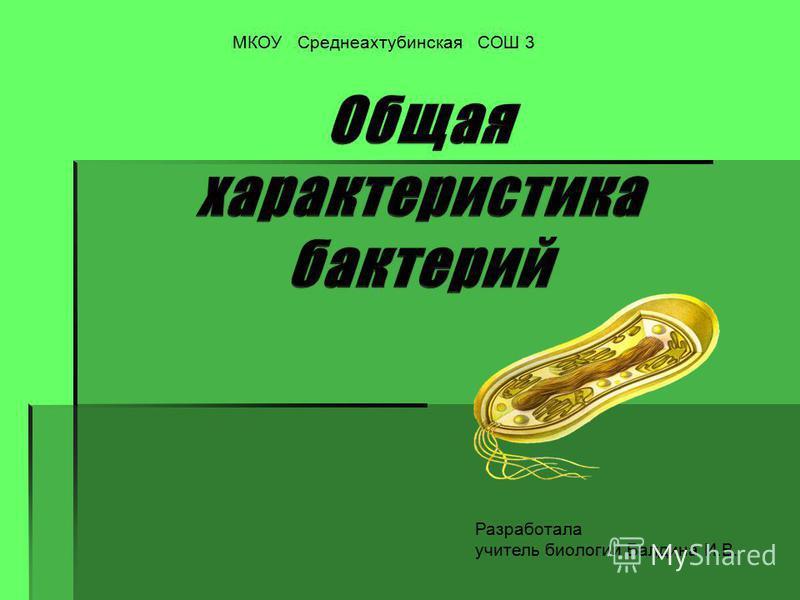 МКОУ Среднеахтубинская СОШ 3 Разработала учитель биологии Балдина И.В.