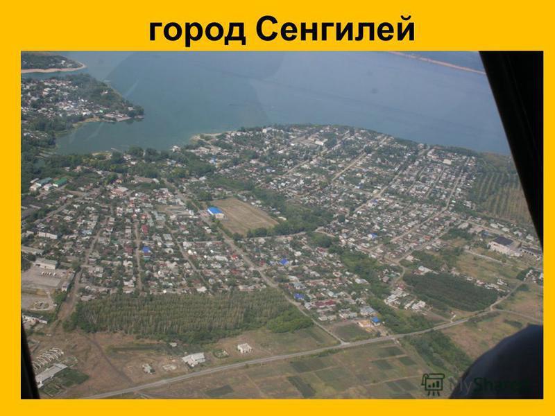 город Сенгилей