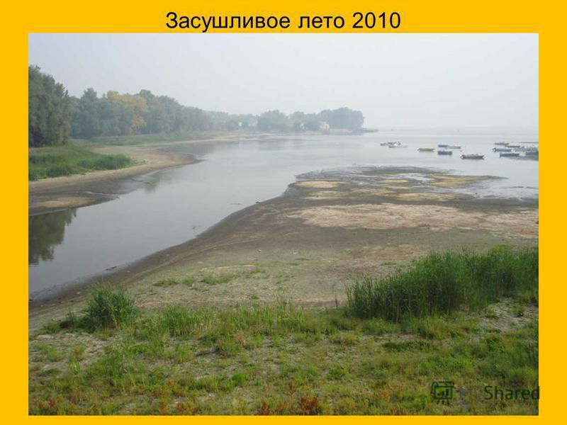 Засушливое лето 2010