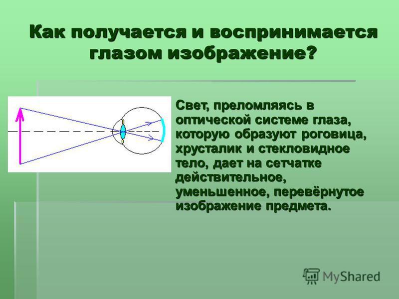 Как получается и воспринимается глазом изображение? Свет, преломляясь в оптической системе глаза, которую образуют роговица, хрусталик и стекловидное тело, дает на сетчатке действительное, уменьшенное, перевёрнутое изображение предмета.