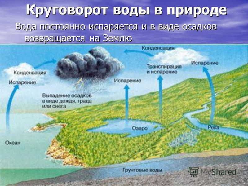 Круговорот воды в природе Вода постоянно испаряется и в виде осадков возвращается на Землю