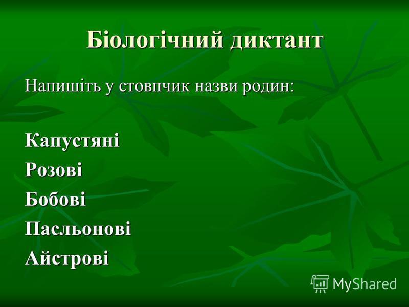 Біологічний диктант Напишіть у стовпчик назви родин: КапустяніРозовіБобовіПасльоновіАйстрові