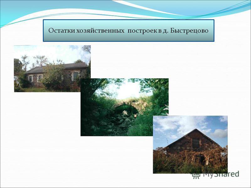 Остатки хозяйственных построек в д. Быстрецово
