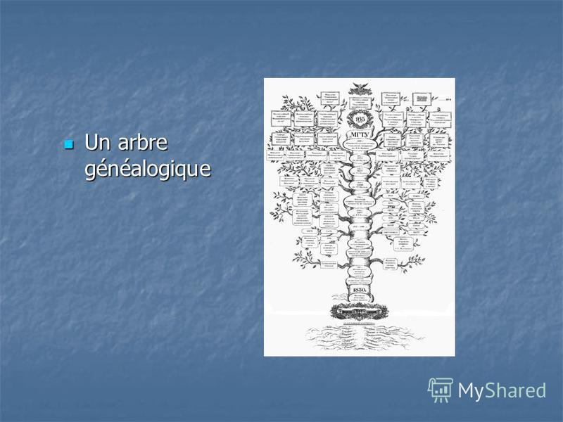 Un arbre généalogique Un arbre généalogique