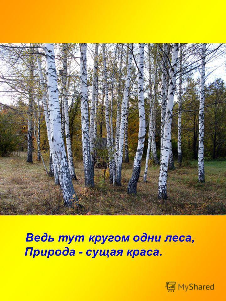 Ведь тут кругом одни леса, Природа - сущая краса.