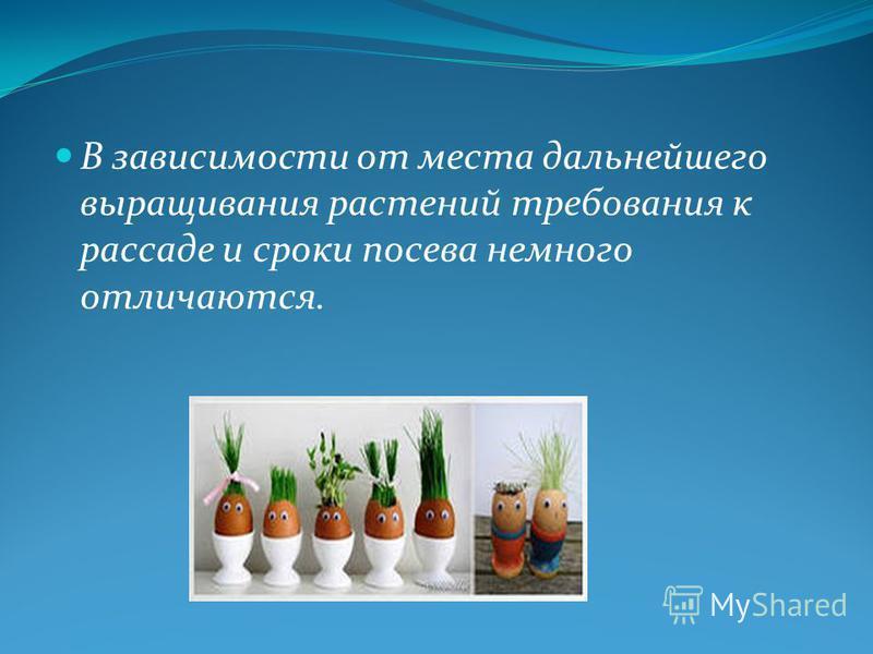 В зависимости от места дальнейшего выращивания растений требования к рассаде и сроки посева немного отличаются.