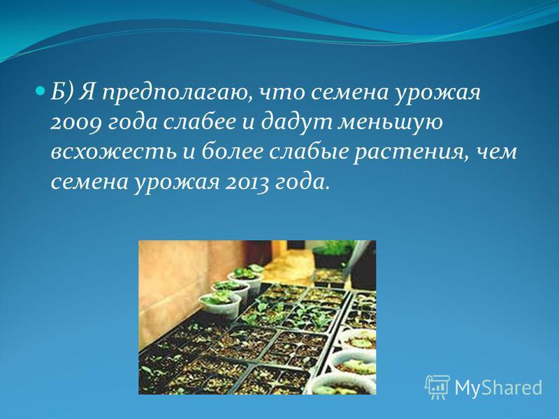 Б) Я предполагаю, что семена урожая 2009 года слабее и дадут меньшую всхожесть и более слабые растения, чем семена урожая 2013 года.