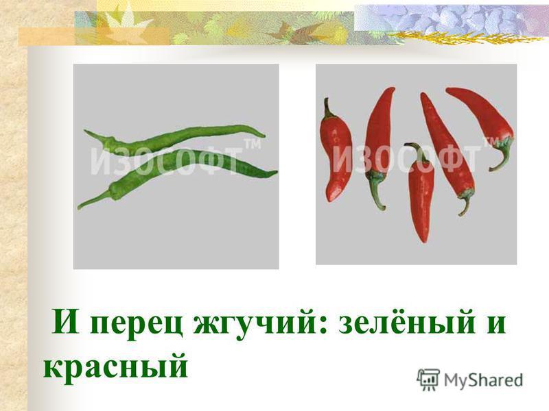 И перец жгучий: зелёный и красный