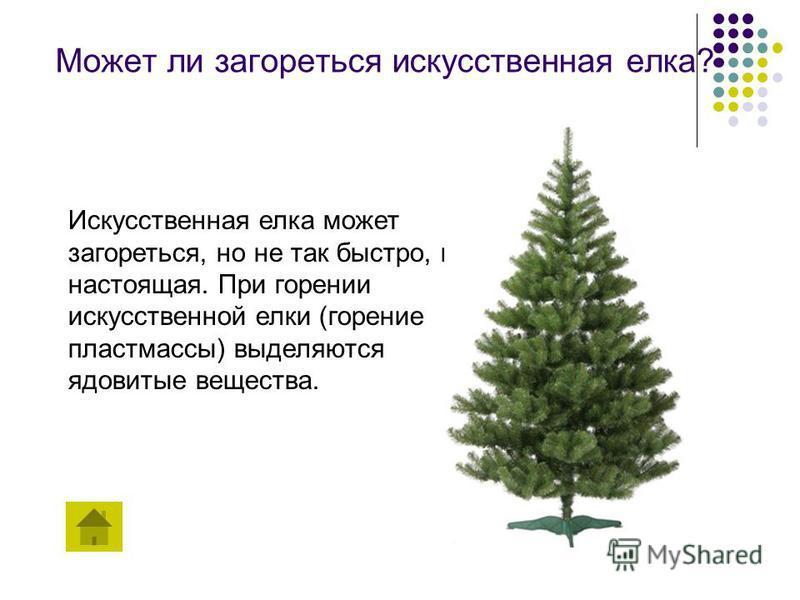 Может ли загореться искусственная елка? Искусственная елка может загореться, но не так быстро, как настоящая. При горении искусственной елки (горение пластмассы) выделяются ядовитые вещества.