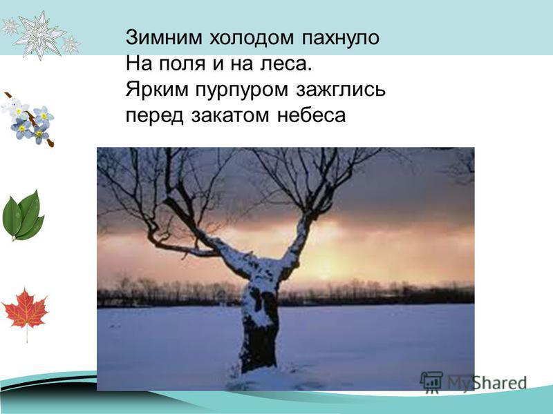 Зимним холодом пахнуло На поля и на леса. Ярким пурпуром зажглись перед закатом небеса