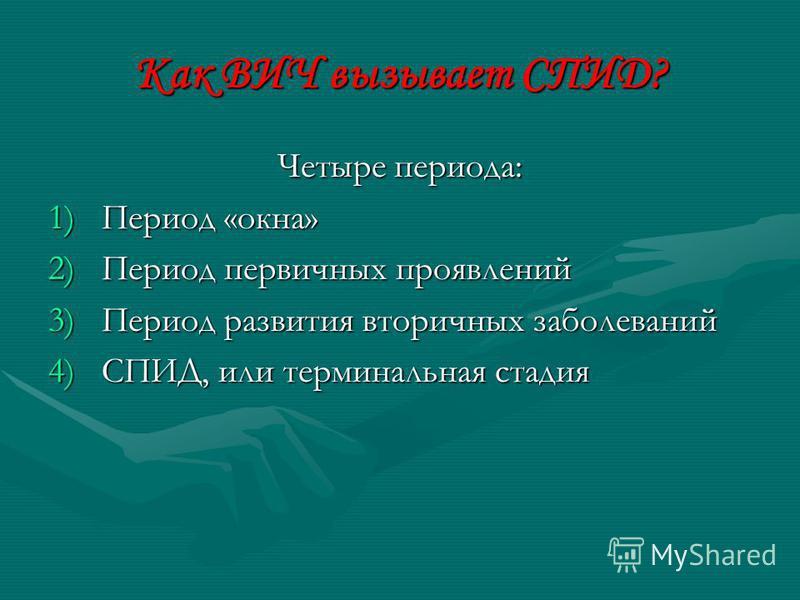 Как ВИЧ вызывает СПИД? Четыре периода: 1)Период «окна» 2)Период первичных проявлений 3)Период развития вторичных заболеваний 4)СПИД, или терминальная стадия
