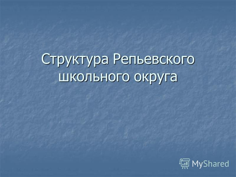 Структура Репьевского школьного округа