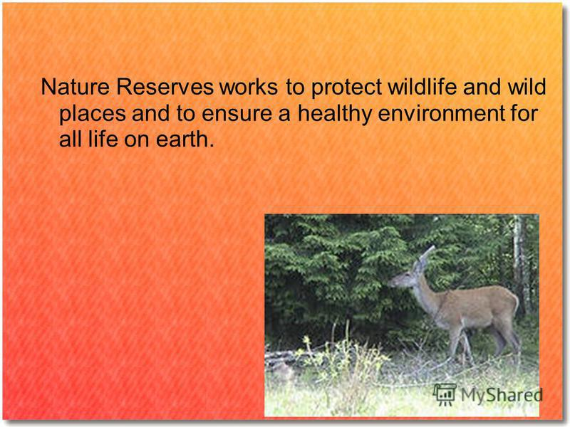 Nature Reserves works to protect wildlife and wild places and to ensure a healthy environment for all life on earth.