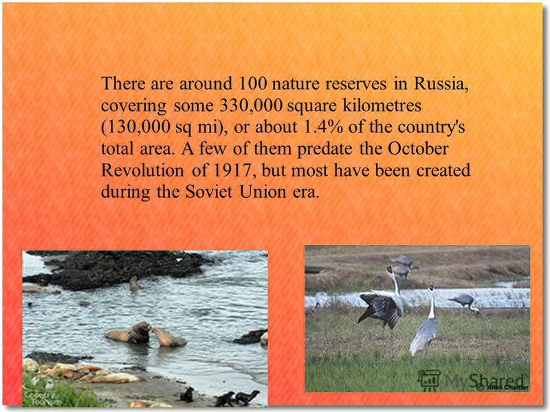 There are around 100 nature reserves in Russia, covering some 330,000 square kilometres (130,000 sq mi), or about 1.4% of the country's total area. A few of them predate the October Revolution of 1917, but most have been created during the Soviet Uni