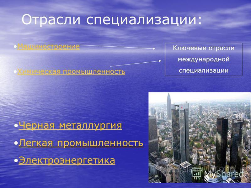 Отрасли специализации: Машиностроение Химическая промышленность Ключевые отрасли международной специализации Черная металлургия Легкая промышленность Электроэнергетика