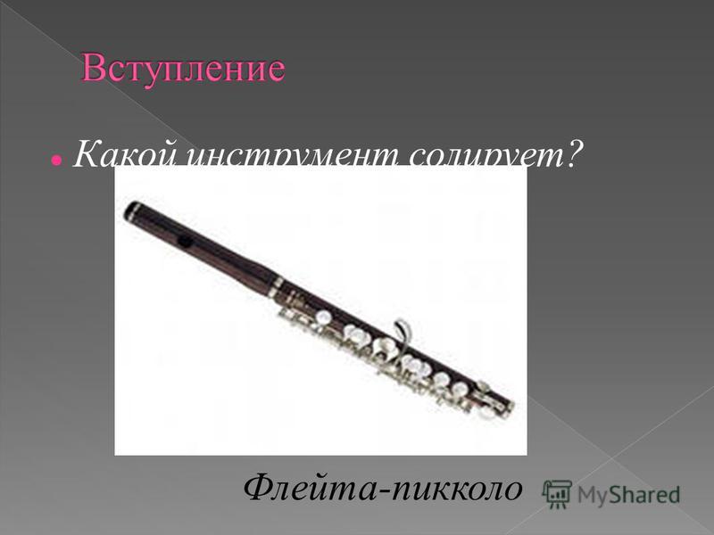 Какой инструмент солирует? Флейта-пикколо