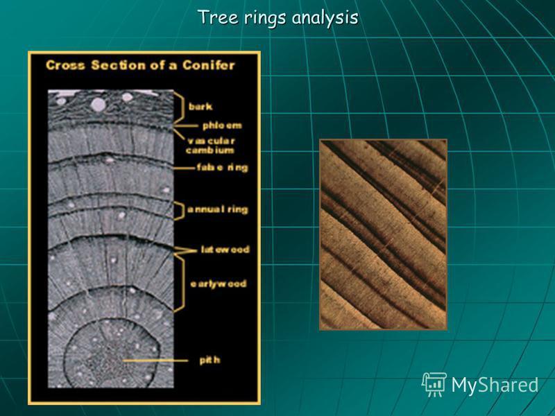 Tree rings analysis