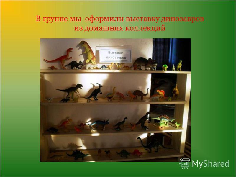 В группе мы оформили выставку динозавров из домашних коллекций