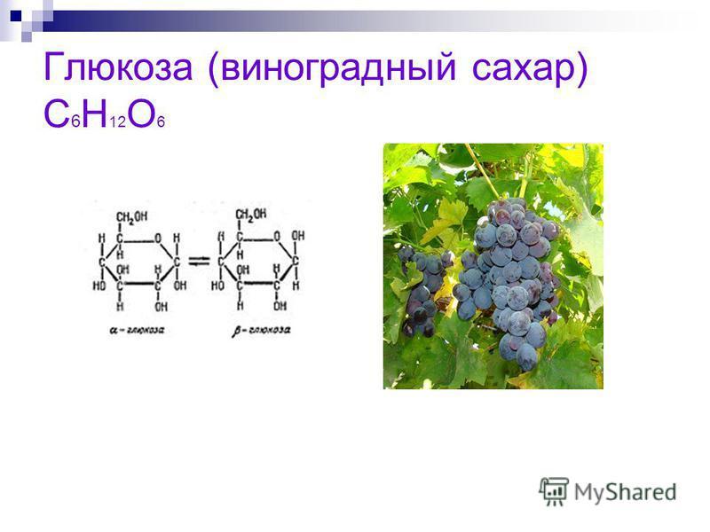 Глюкоза (виноградный сахар) С 6 Н 12 О 6