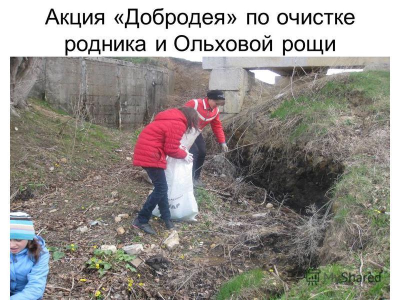 Акция «Добродея» по очистке родника и Ольховой рощи