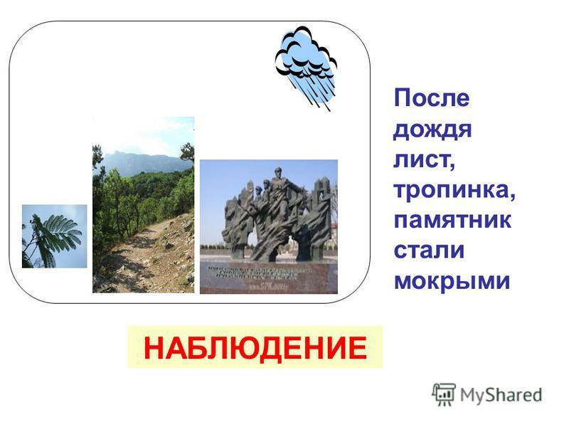 После дождя лист, тропинка, памятник стали мокрыми НАБЛЮДЕНИЕ